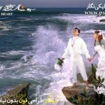 فون عروس و داماد 3