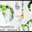 دانلود فون عروس و داماد در باغ و دکور
