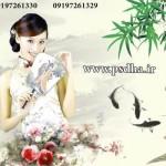 بک گراند عروس چینی