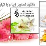 تصاویر با کیفیت گل های زیبا