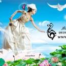 دانلود فون رویایی عروس در گل های نیلوفر آبی