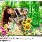 بک گراند عکس طبیعت و گل ها