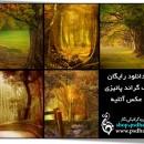 بک گراند با کیفیت پائیزی عکس