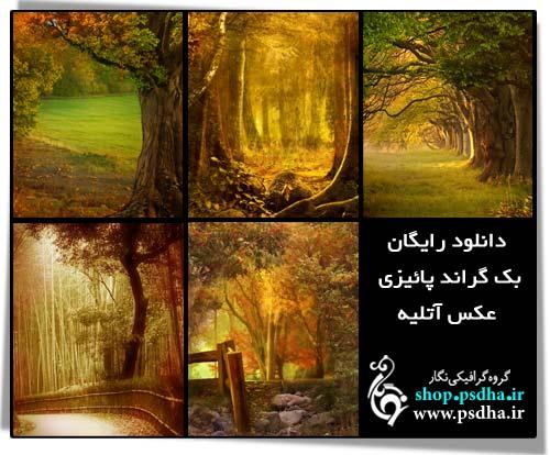 بک گراند با کیفیت عکس