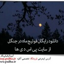 دانلود رایگان فوتیج ماه در جنگل