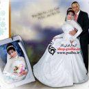 دانلود بک گراند لایه باز عکس عروسی
