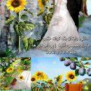 دانلود بک گراند عکس رویایی آتلیه عروس و کودک