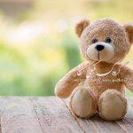 بک گراند با کیفیت عالی با خرس های عروسکی مناسب ژست های مختلف