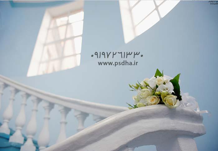 دانلود بک گراند عکس عروس داماد