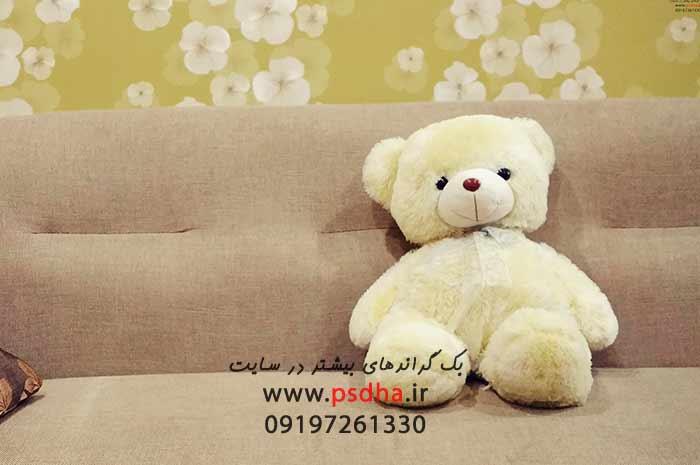 بک گراند خرس عروسکی