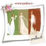 دانلود عکس وکتور عروس (کیفیت بالا)