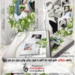دانلود کاور و لیبل DVD برای فیلم عروس و داماد
