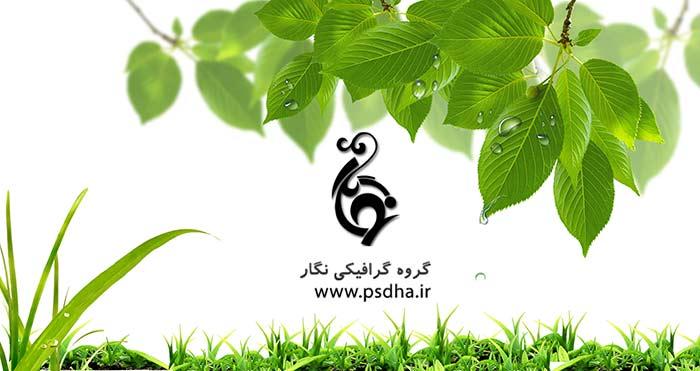 دانلود لایه باز گل و سبزه برای طراحی