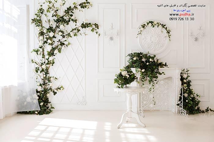 دانلود بک گراند وایت روم عروس