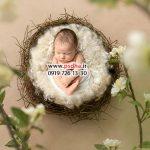 دانلود بک دراپ نوزاد کد 4070